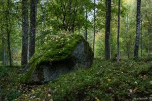 Sten i Stenbäcken