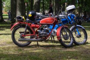 BM Jaguarino 50